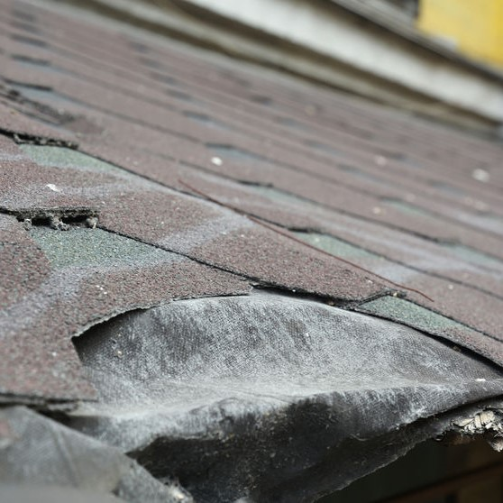 damaged roof from hail