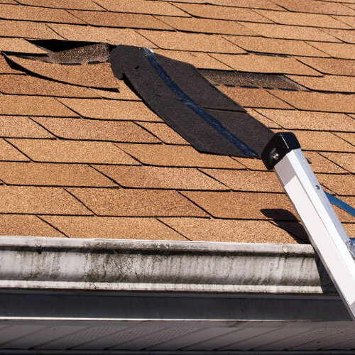 Damaged roofing shingles.