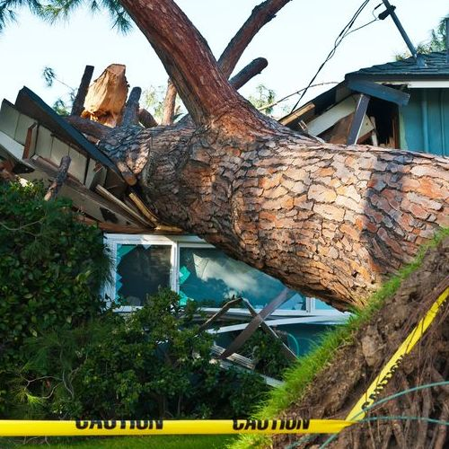 Storm Damage Roof Repair Needed for Home with Tree Branch